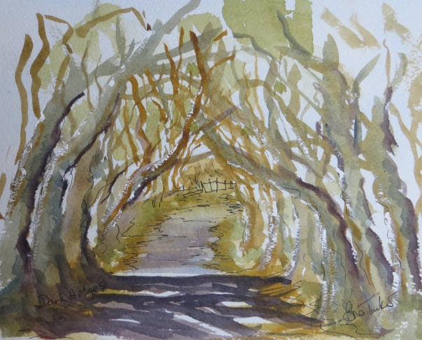 The Dark Hedges near Armoy. Co Antrim. The King's Highway in Game of Thrones
