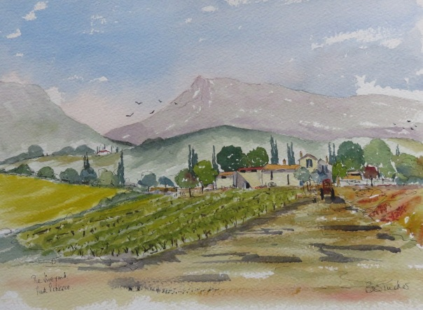 The Vineyard, Haut Provence