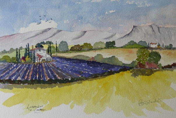 The Lavender Farm. Watercolour 14 by 10 inches.